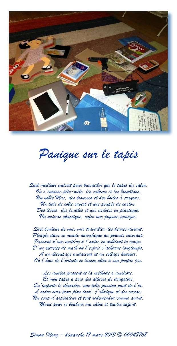 http://img839.imageshack.us/img839/4818/paniquesurletapis.jpg