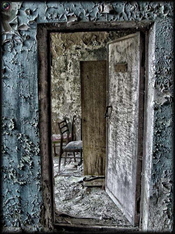 chernobyl48 - Chernobyl 25 años después